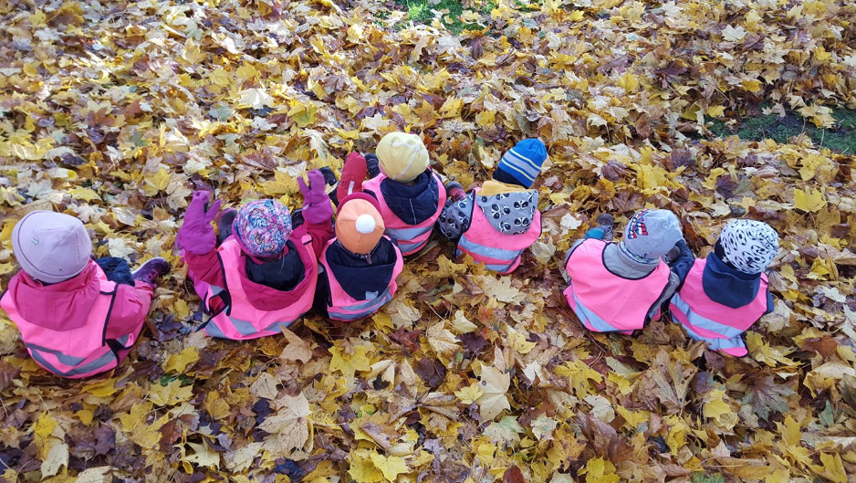 Daycare children sit in autumn leaves